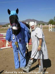 Halloween with Horse & Vet