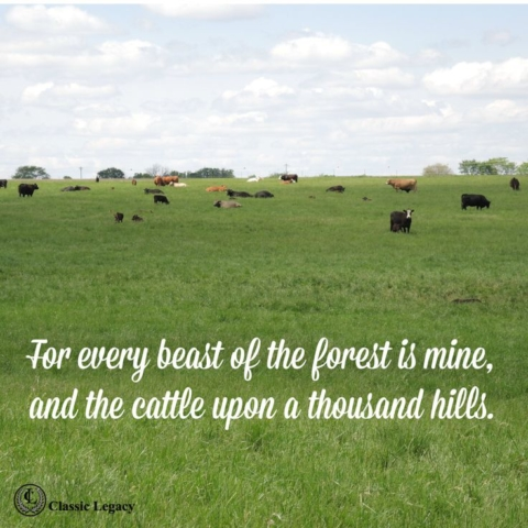 Quotes, For every beast of the field is mine and the cattle upon a thousand hills