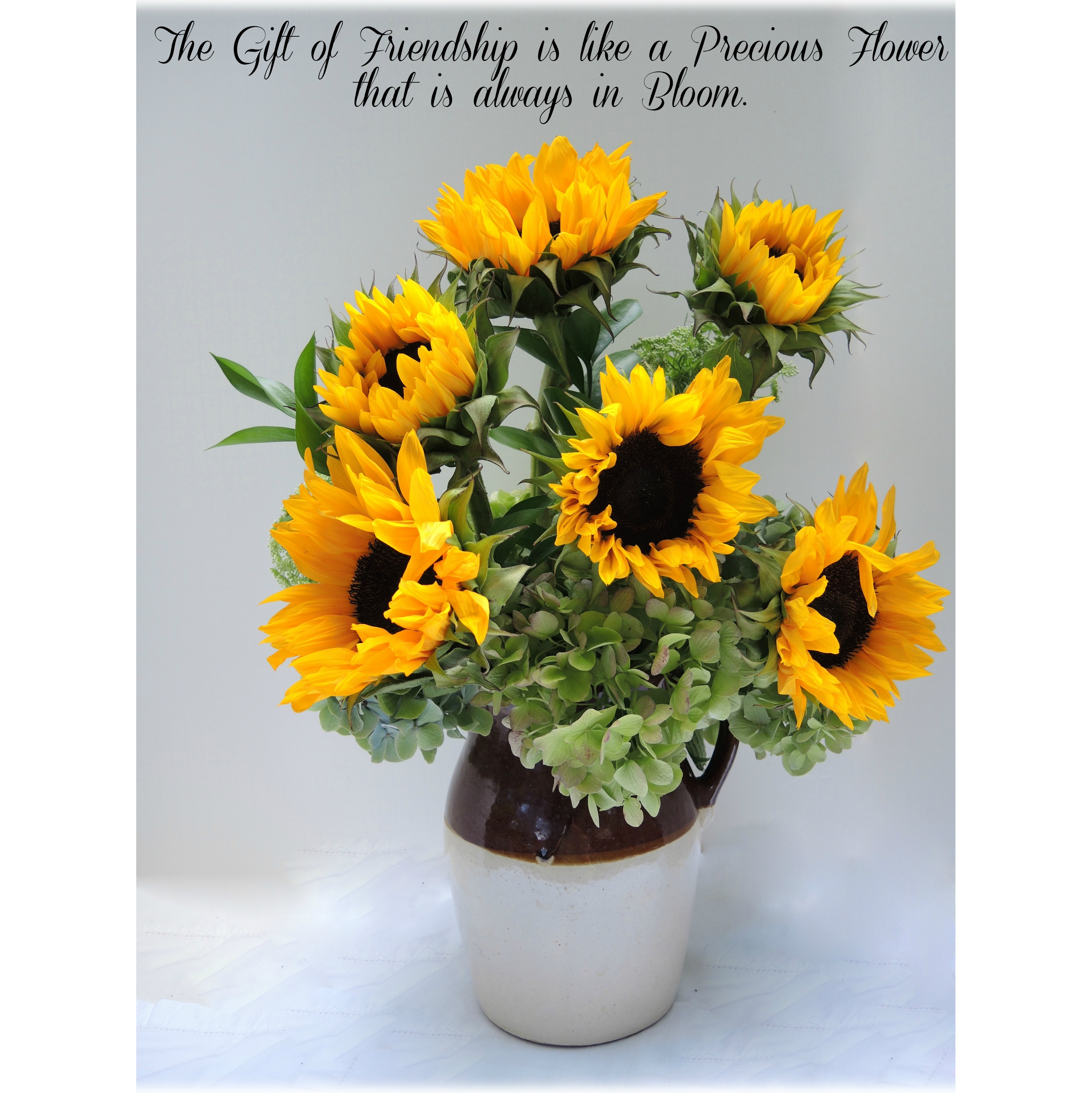 Sunflower & Friendship Quote