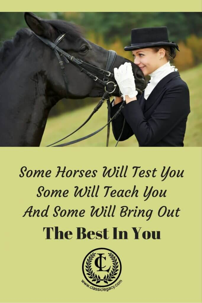 Quote Equestrian Horse & Rider Some Horse will test you  Some Will Teach You and Some will bring out the best in you.